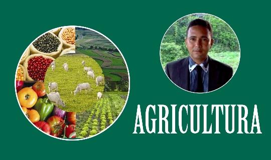 sec-agricultura